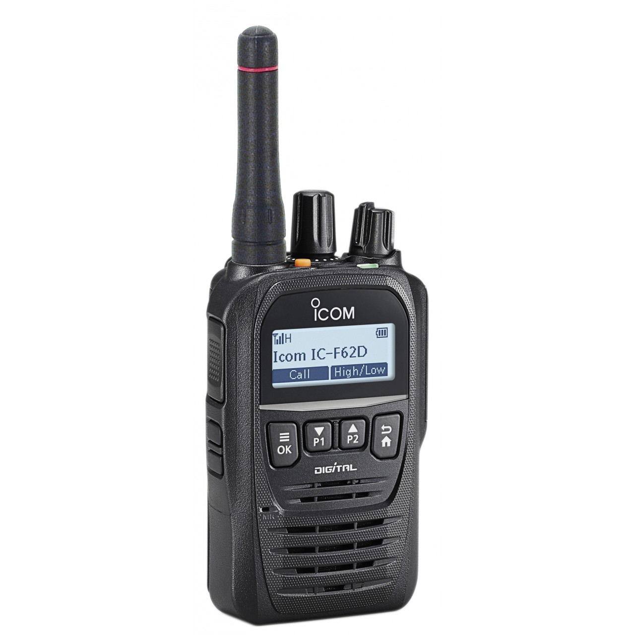 IF-F62DM Portatifs - ICOM